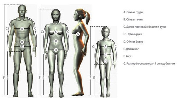 таблицы размеров для одежды как определится с размером