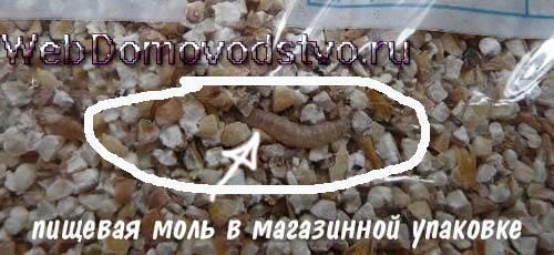 зараженная червяками магазинная упаковка