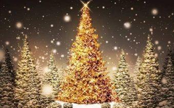 Нарядная рождественская елка в лесу