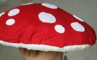 шляпа мухомор