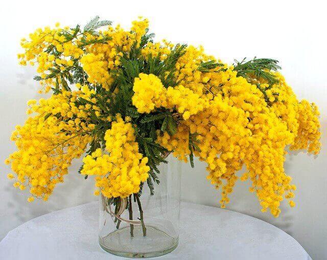 Как дольше сохранить свежесть срезанных цветов в вазе