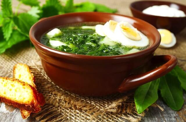 Витаминные супы: рецепты из крапивы. Заготавливаем крапиву для супа на зиму