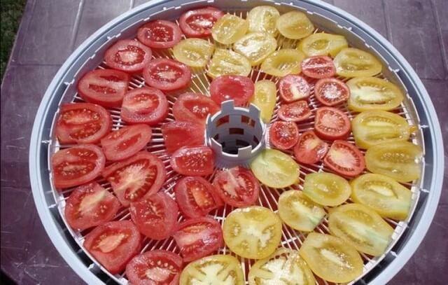 Заготавливаем помидоры на зиму: сушим и замораживаем правильно
