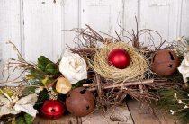 Как украсить комнату на Рождество — домашний цветок пуансеттия